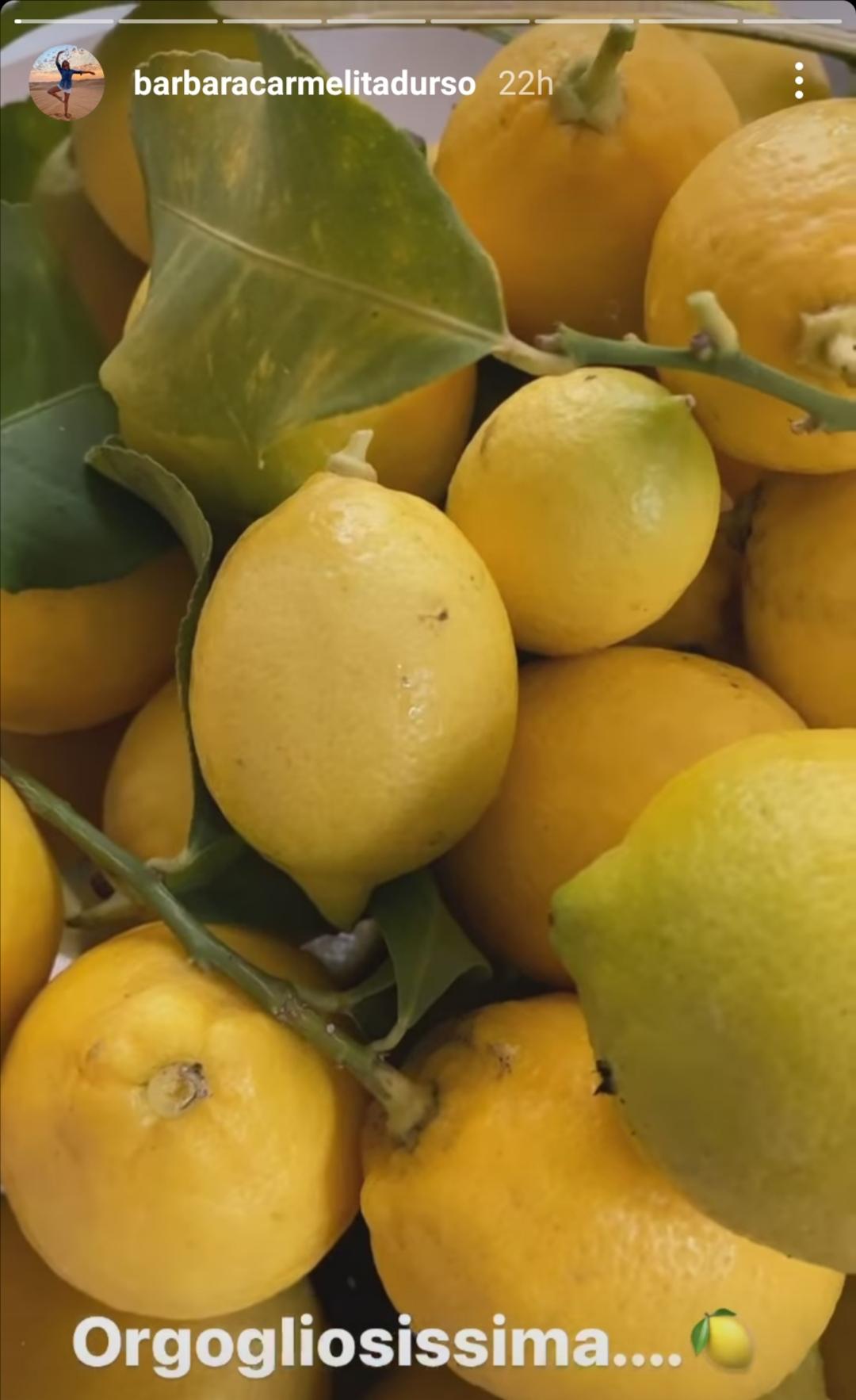 I limoni di Barbara D'Urso