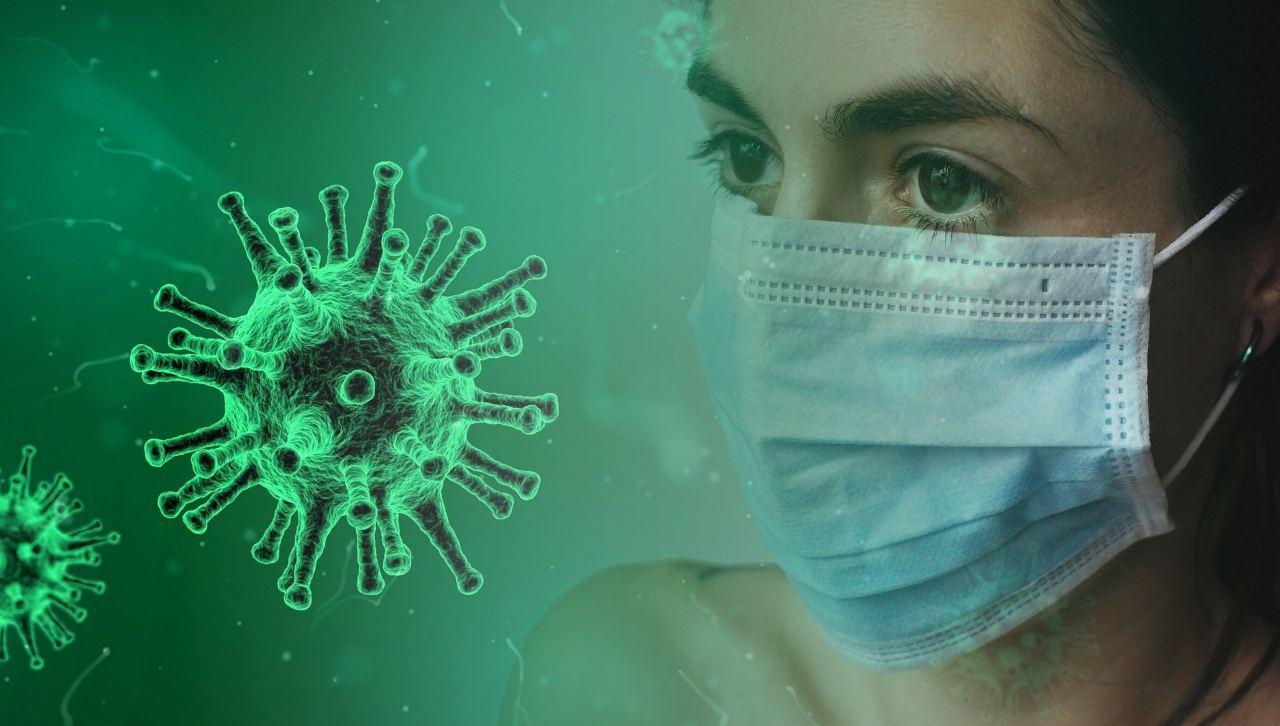 coronavirus (web source)