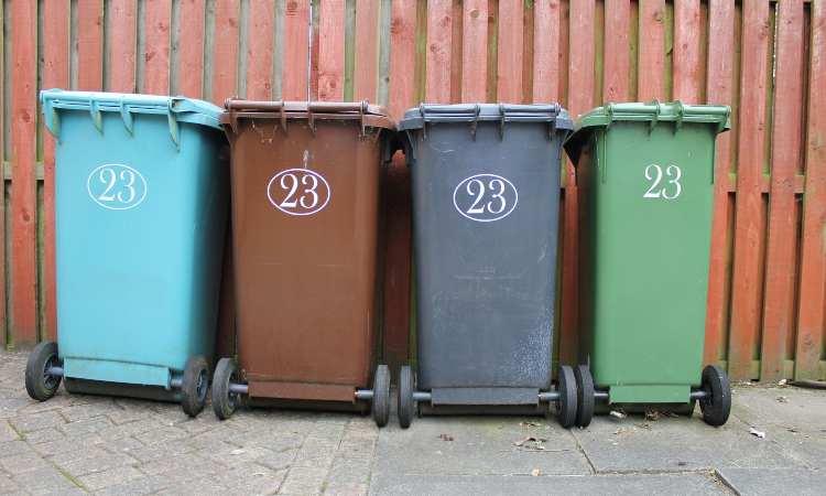 cassonetti raccolta rifiuti