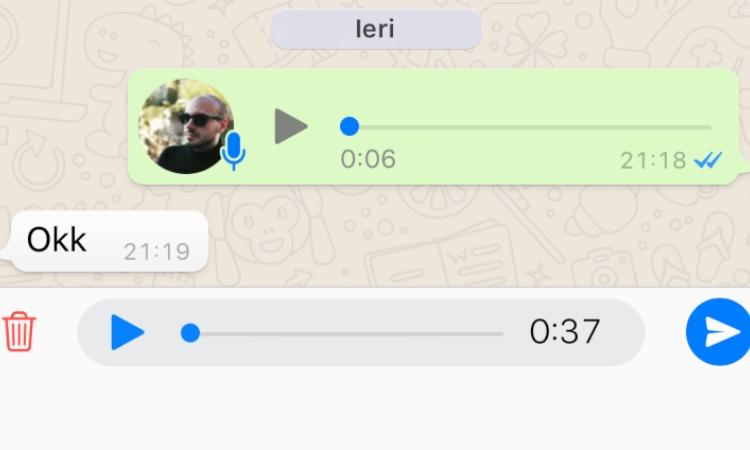 Un messaggio vocale su Whatsapp
