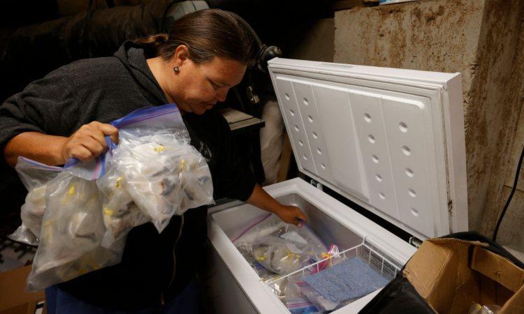 Una donna vicino ad un congelatore