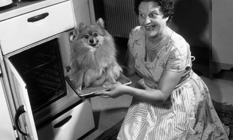 Un cane e una donna di fronte a un forno