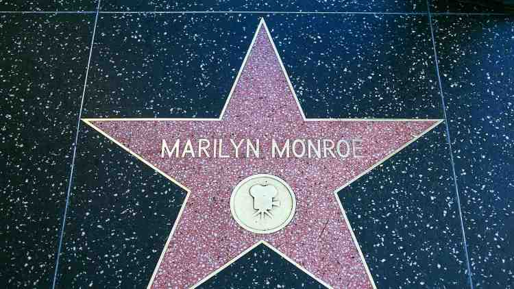 Star di hollywood